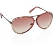 Calvin Klein Aviator Sunglasses(Pink)