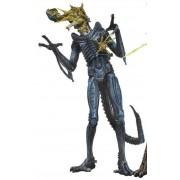 Neca Alien - Battle Damaged Warrior Blue - S12