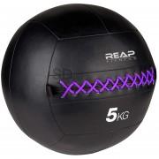 Wall Ball Reap fitness balón medicinal 5 KG