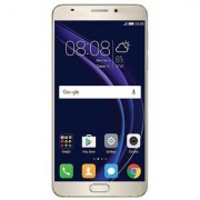 Tashan TS-455 (2 GB RAM 16GB)-Gold (with 5.0-inch 720p Display and 5/2 MP Camera)