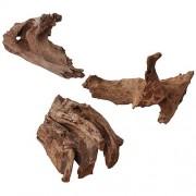 EBI Nature - Wood Jati 25-45cm M