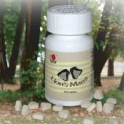 DXN Херициум (Лъвска грива) таблетка,120 бр + ПОДАРЪК: Крем за ръце «Червена боровинка & ягода»