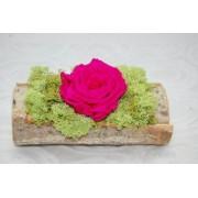 Trandafir criogenat in suport de lemn Ciclam