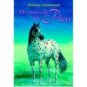 Divoza De zoektocht van Pico Nederlands boek