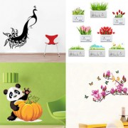EJA Art Combo of 4 Wall Sticker King Of Bird-(60 X 50 Cms)|Sb Flowers-(35 X11 Cms)|Pumpkin Panda-(50 X 50 Cms)|Magnolia Flower And Butterflies-(70 X 100 Cms)-Matrial Vinyl