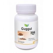 Biotrex Guggul Herbal Dietary Supplement - 250mg Natural source of Anti-oxidants (60 Capsules)