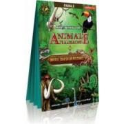 Harti pentru copii - Animale pe mapamond + Imperiul creaturilor istorice