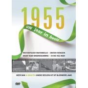 1955 UW JAAR IN BEELD. DOCUMENTARY, DVDNL
