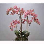 Aranjament floral deosebit ORCHID O/SOIL RED 75cm 113674 SK