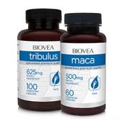 TRIBULUS 625mg & MACA (Organic) 500mg VALUE PACK