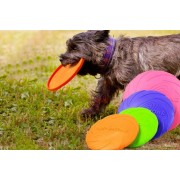 Shanghai Zhengxiang QicheZuling £5.99 instead of £19.99 for a small dog frisbee, £7.99 for a medium, £8.99 for a large or £12.99 for a set with all three sizes from Hey4Beauty - save up to 70%