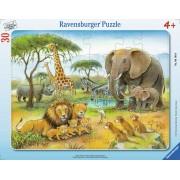 Puzzle Ravensburger - Africa Salbatica, 30 piese (06146)