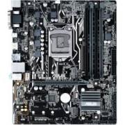 Placa de baza Asus Prime B250M-A Socket 1151