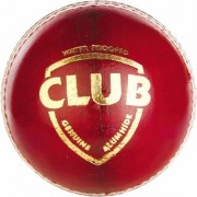sg club red leather cricket ball