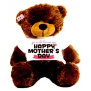 2 feet big brown teddy bear wearing You are the best mom ever Happy Mothers Day T-shirt