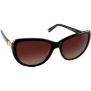 Tommy Hilfiger Cat-eye Sunglasses(Brown)