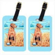 Caroline's Treasures 7112BT Chesapeake Bay Retriever Luggage Tag(Multicolor)