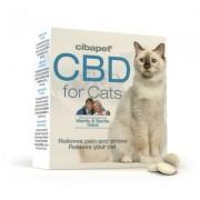Cibdol Pastilles de CBD 4% pour chats (Cibapet)