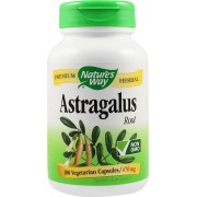Astragalus 470mg - Nature's Way