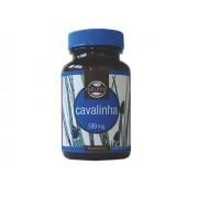 Dietmed Cavalinha Comprimidos