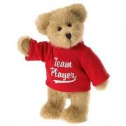 Boyds Bears 8 Plush Team Spirit Bear (Bears from the Heart Thinkin of Ya Collection)