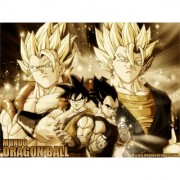 goku and vegeta sticker poster|dragon ball z poster|anime poster|size:12x18 inch|multicolor