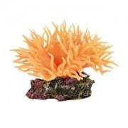 Mořská řasa oranžová 11 cm TRIXIE
