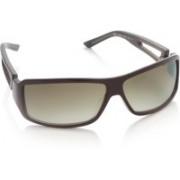 Diesel Rectangular Sunglasses(Brown)
