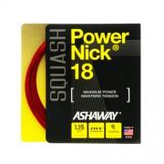 Ashaway PowerNick 18 squash húr