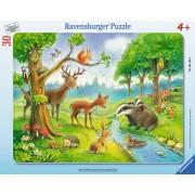 PUZZLE ANIMALE SALBATICE, 30 PIESE - RAVENSBURGER (RVSPC06138)