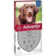 Bayer Animali Bayer Advantix Spot-On Per Cani Oltre 25 Kg Fino A 40 Kg 4 Pipette Da 4 Ml