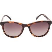 INVU Rectangular Sunglasses(Green)