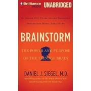 Brainstorm: The Power and Purpose of the Teenage Brain: An Inside-Out Guide to the Emerging Adolescent Mind, Ages 12-24/Daniel J. Siegel