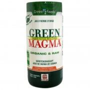 Green Magma poudre de jus d'herbe d'orge Celnat 150g