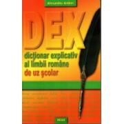 Dictionar explicativ de uz scolar