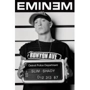 Eminem Mugshot Maxi Poster