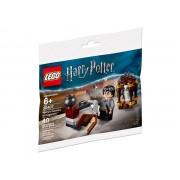 30407 Drumul spre Hogwarts