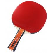 Paleta tenis de masa Cornilleau Sport 300