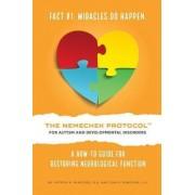 The Nemechek Protocol for Autism and Developmental Disorders by Jean R Nemechek J D