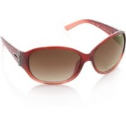 Pepe Jeans Oval Sunglasses(Brown)