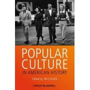 Popular Culture in American Hi, Paperback/Jim Cullen