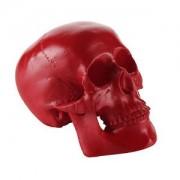 ELECTROPRIME Resin Replica Human Skull Art Model Anatomy Party Bar Pub Cafe Decor Red