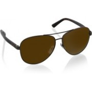 DKNY Aviator Sunglasses(Golden)