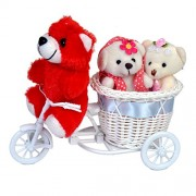 Lovely Love Teddy Couple on Cycle Driven by Pretty Red Teddy