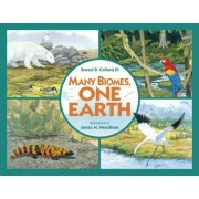 Many Biomes, One Earth: Exploring Terrestrial Biomes of North and South America, Paperback