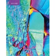 2018 Planner UV: Weekly Monthly Planner Organizer Ultra-Violet Titanium Rainbow Crystal