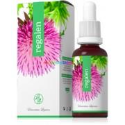 Regalen cseppek 30 ml - a máj, az epehólyag, belek, allergia - Energy