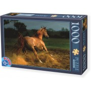 DToys Puzzle 1000 Horses 04 (07/65988-04)