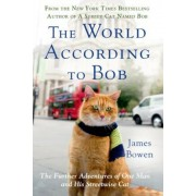 The World According to Bob: The Further Adventures of One Man and His Streetwise Cat, Paperback