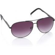Flying Machine Aviator Sunglasses(Violet)